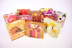 Подарочные пакеты ламинированные 16*16 (20 шт/уп)