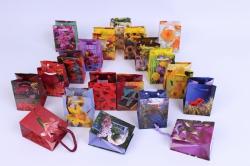 Подарочные пакеты ламинированные 6*8  (20 шт/уп)