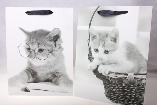 Подарочные пакеты  Люкс Кошечки (18х24х8) (12 штук)