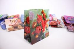 Подарочные пакеты - Сумкаламинированная14x11x6,5см(20шт/уп)