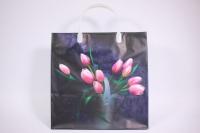 Подарочные пакеты - Сумка мягкий пластик 30*30*10см М5 (20шт в уп)