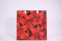 Подарочные пакеты - Сумка мягкий пластик 30*30*10см PE108 (20шт в уп)