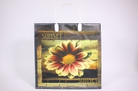 Подарочные пакеты - Сумка мягкий пластик 30*30*10см PE308 (20шт в уп)