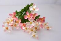 примула розово/персиковая букет цвета в ассортименте