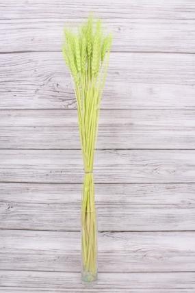Пшеница , цв. салатовый 2238Н. 74см.
