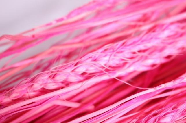 пшеница розовая 75гр  н
