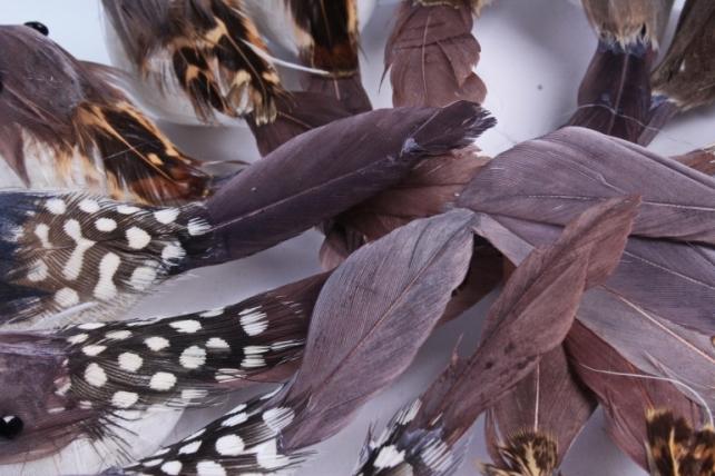 Птичка  в круге 5 см на клипсе (12шт в уп) TFB523030