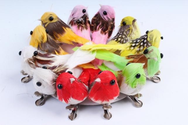 Птичка  в круге 5 см на клипсе (12шт в уп) TFB523026