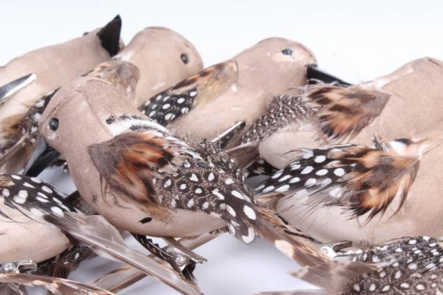 Птички Дятел на прищепке(12шт в уп) W15969-1