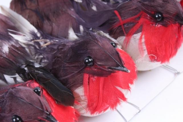 Птички на прищепке(12шт в уп) H1804011