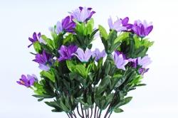 Рододендрон фиолетовый