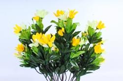 Рододендрон жёлтый
