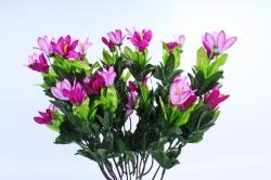 Рододендрон пурпурный