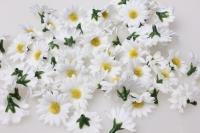 Ромашки  цветные  2,5см (60шт в уп) 3138 - искусственные растения