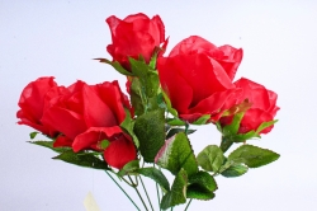 Роза (7 цветков) красная