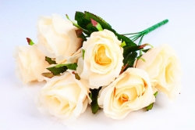 Роза (7 цветков) персиковая