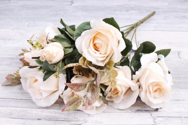 Роза Дизайн  Кремовая