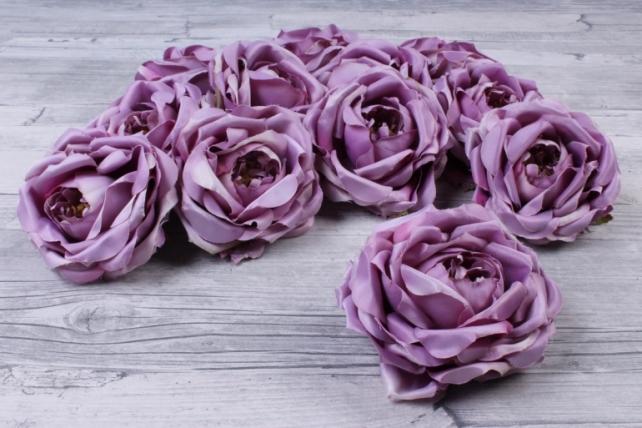 Роза французская  ( 12 шт в уп) сиреневая SUN462
