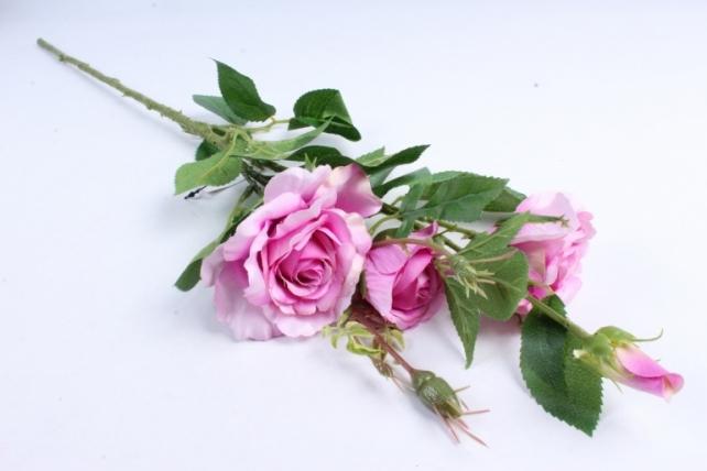 Роза на ветке  сиреневая SUN130