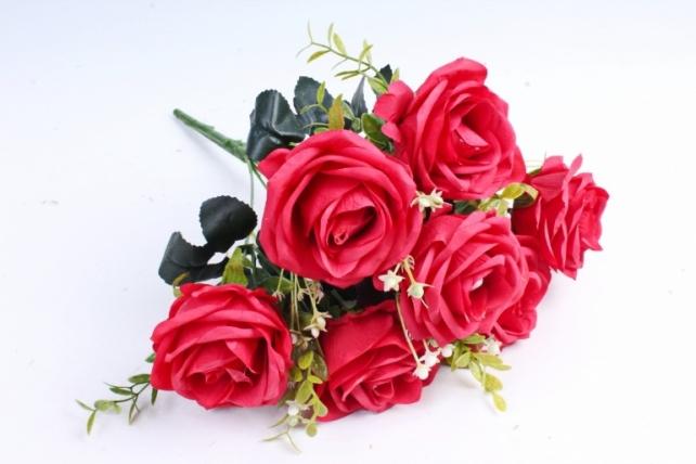 Роза обыкновенная  красная