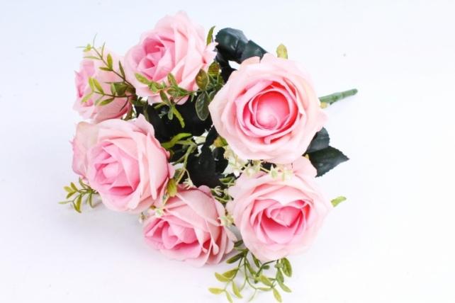 Роза обыкновенная  розовая