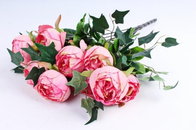 "Роза ""помпон"" с плющём  коралловая"