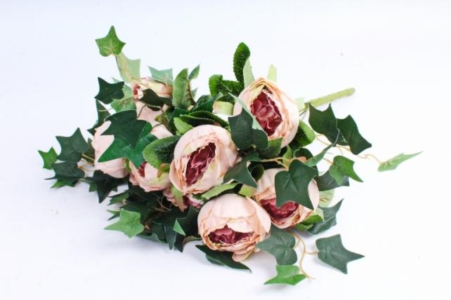 """Роза """"помпон"""" с плющём  кремовая"""