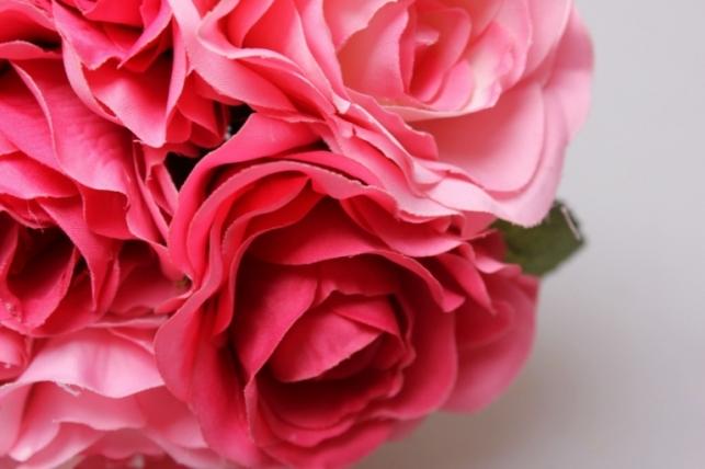 роза розовая/ярко-розовая 1/12шт 21см kwy 473 9482