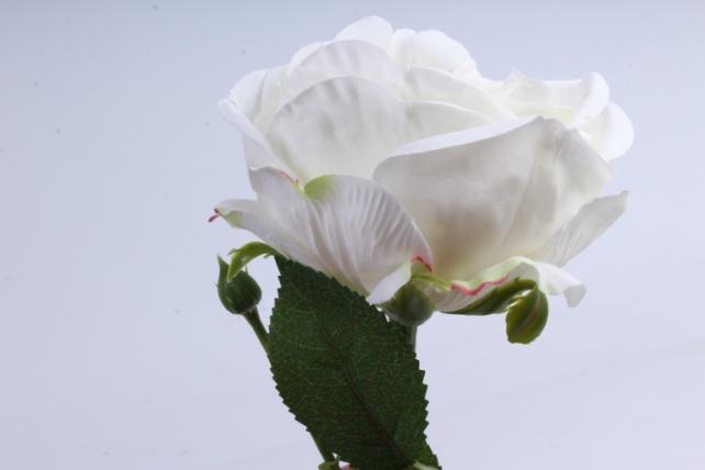 роза с бутоном 64 см белая sun520