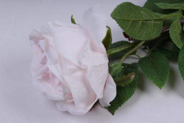 роза с бутоном 64 см нежно-розовая sun520