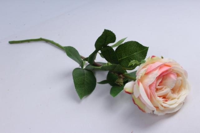 роза с бутоном 64 см персиковая sun520
