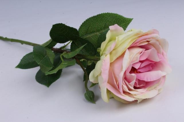 Роза с бутоном 64 см розово-салатовая SUN520