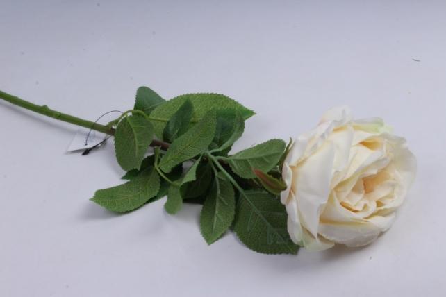 роза с бутоном 64 см ваниль sun520
