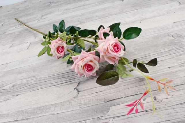 Роза с шипами розовая