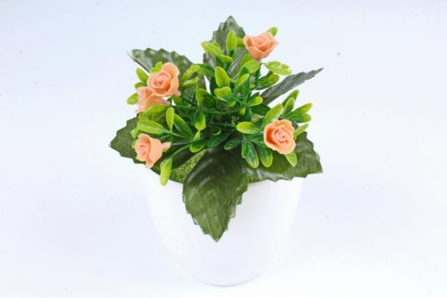 Розочки короткие   персиковые