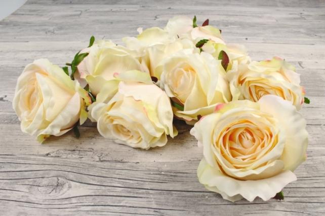 Розы 7см ( 12 шт в уп)  кремовые SUN388-1451