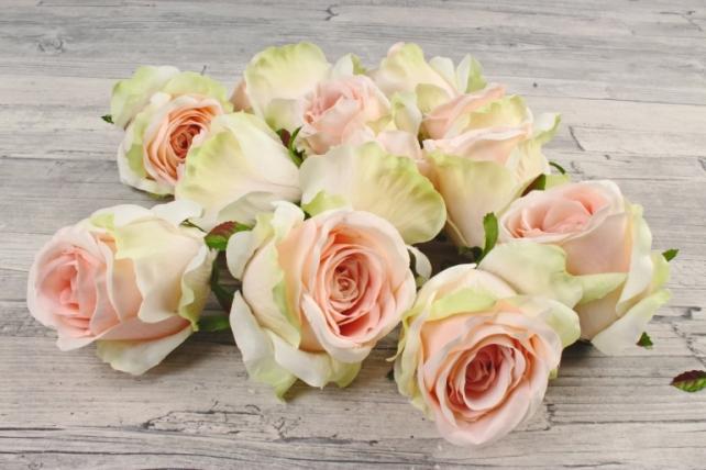 Розы 7см ( 12 шт в уп)  салатово-розовые SUN388-1582