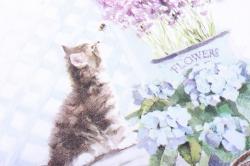 салфетка декупажная 33*33 котенок  13309990