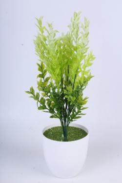 Самшит зелёно-белый 35 см - искусственные растения