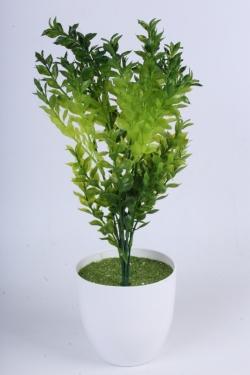 Самшит зелёно-салатовый 35 см - искусственные растения