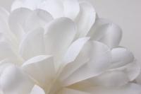 шар-цветок средний d=15см белый 8337