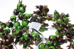 искусственные фрукты шиповник искусственный  2,5см  (12 пучков по 10шт) 7664
