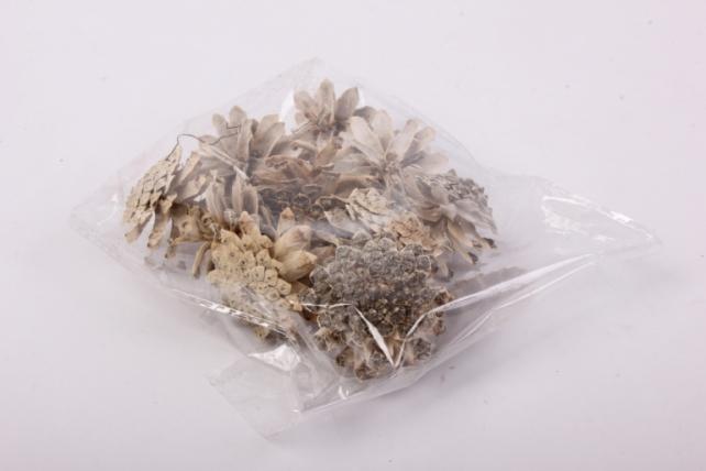 шишки сосновые отбеленные натуральные (10шт в уп ) 4x4 см