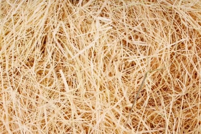 Сизалевое  волокно Натуральное (100гр) в пакете  N101