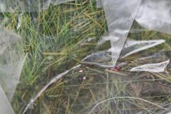 SL17073 Комплект корзин из травы набор из 2-х шт