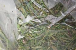 SL17A77 Комплект корзин из травы набор из 2-х шт