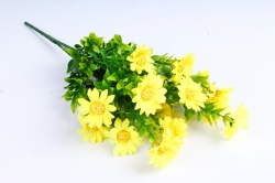 Солнцецвет жёлтый