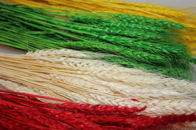 сухоцветы пшеница 75гр сухоцветы пшеница 75гр - белый 7316