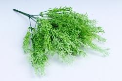 Трава зелёная  GA8J379