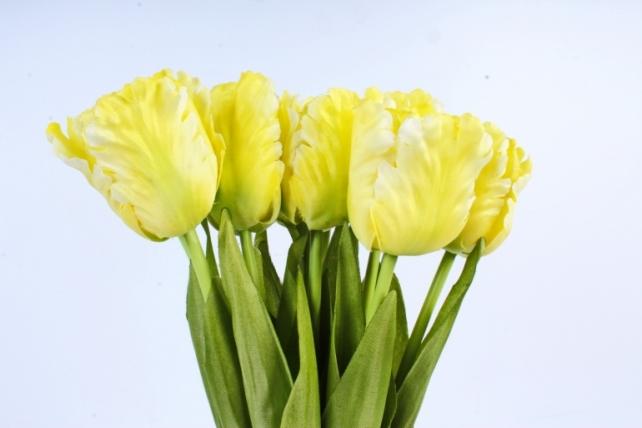 Тюльпаны букет  (10 шт в уп) жёлтые ART007